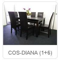COS-DIANA (1+6)